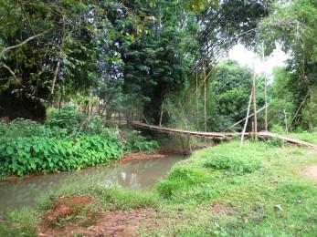 NKM wooden bridge