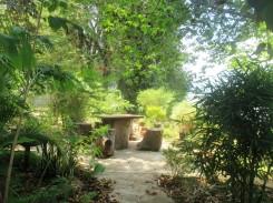 NKM homestay garden (2)
