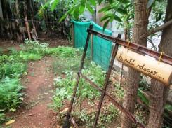 NKM homestay garden (3)